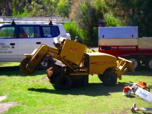 The large Rayco Stump Muncher